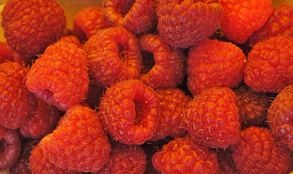 frutti bosco val di fiemme