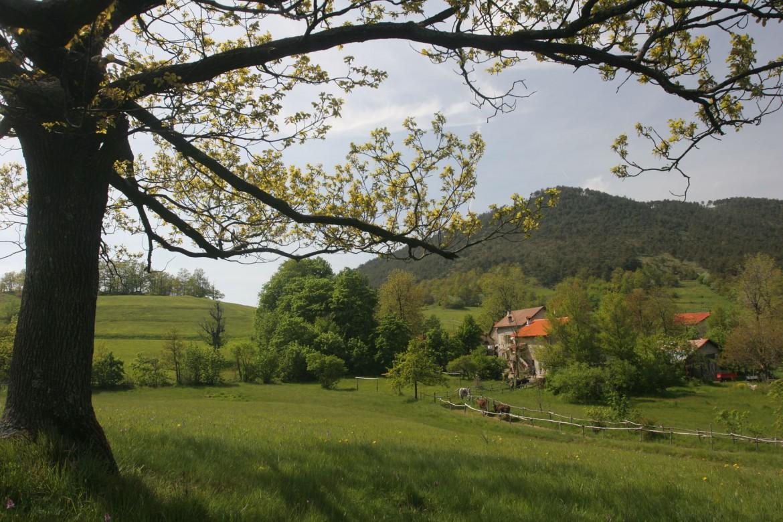 Giornata Europea dei Parchi in Piemonte