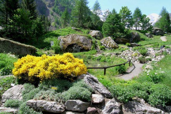 Giardino Botanico Paradisio Cogne, Valle d'Aosta