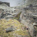 Adamello Ultra Trail 2016