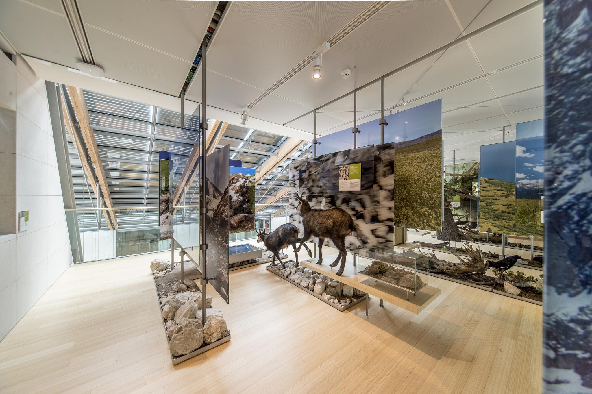 Muse Trento, gli spazi espositivi
