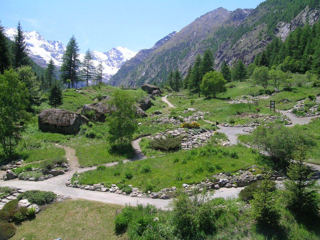 Apertura estiva del Giardino Botanico Alpino Paradisia di Cogne, nel Parco Gran Paradiso