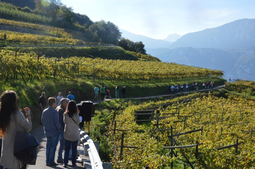 Degustazioni di vino lungo le Strade del Vino e dei Sapori del Trentino