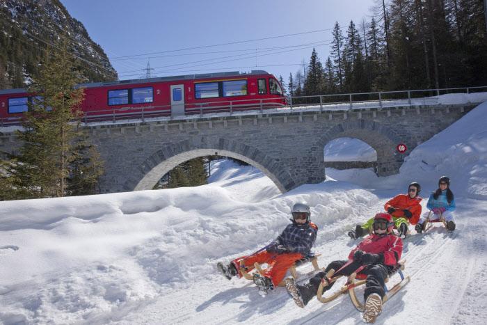 Treno del Bernina + slitta: emozioni sui monti della Svizzera