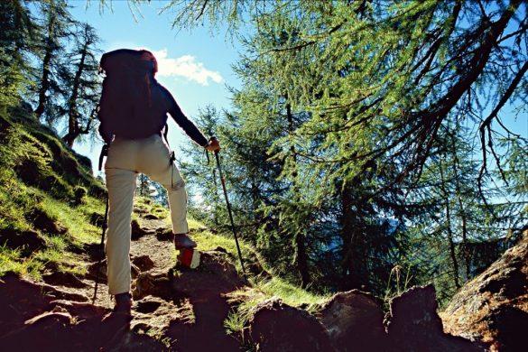 Trekking a Sappada in estate. Foto: M.Crivellari