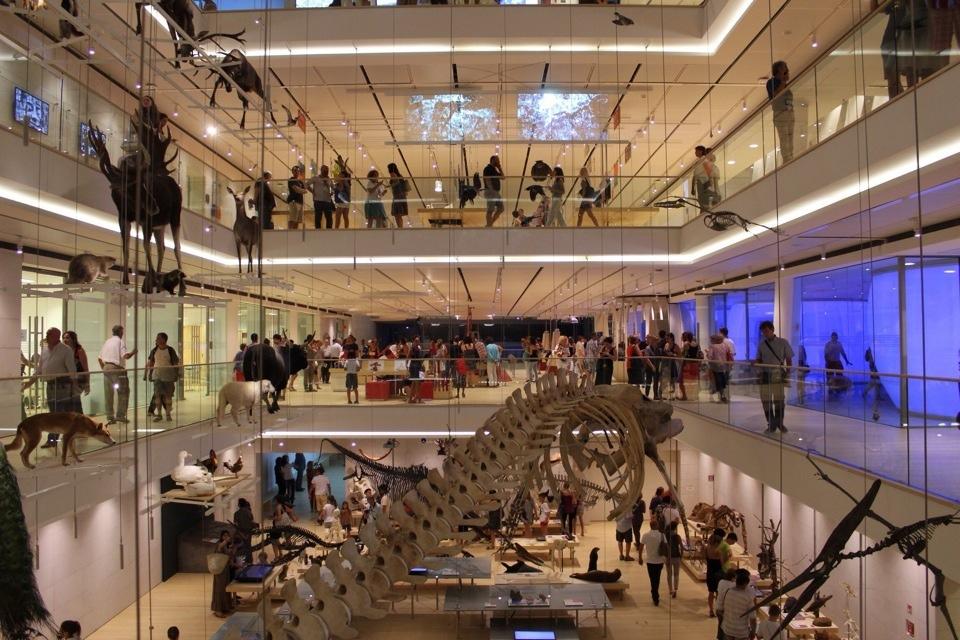 L'interno del MUSE di Trento