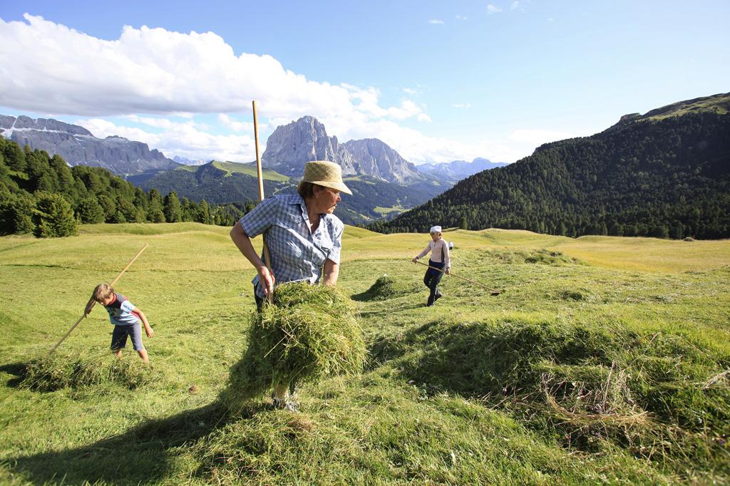 Tagliare il fieno in Val Gardena