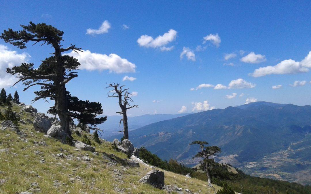 Outdoor in Basilicata: trekking sulla cima del Pollino