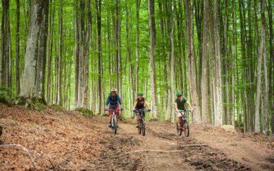 Mountainbike sul Monte Amiata