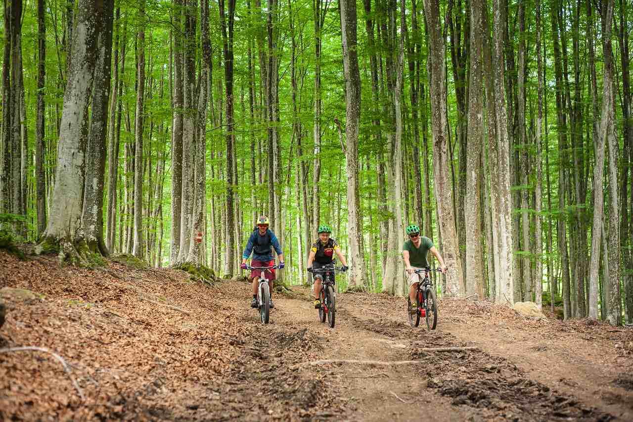 Mountainbike-MONTE-AMIATA-FOTO-MARIO_LORCA