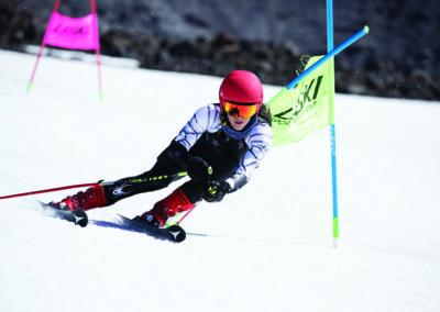Sci alpinio Casco Icon Smith