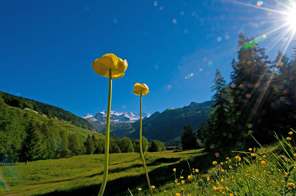 Vacanza a Gressoney e in Val d'Ayas con la speciale promozione estate 2013