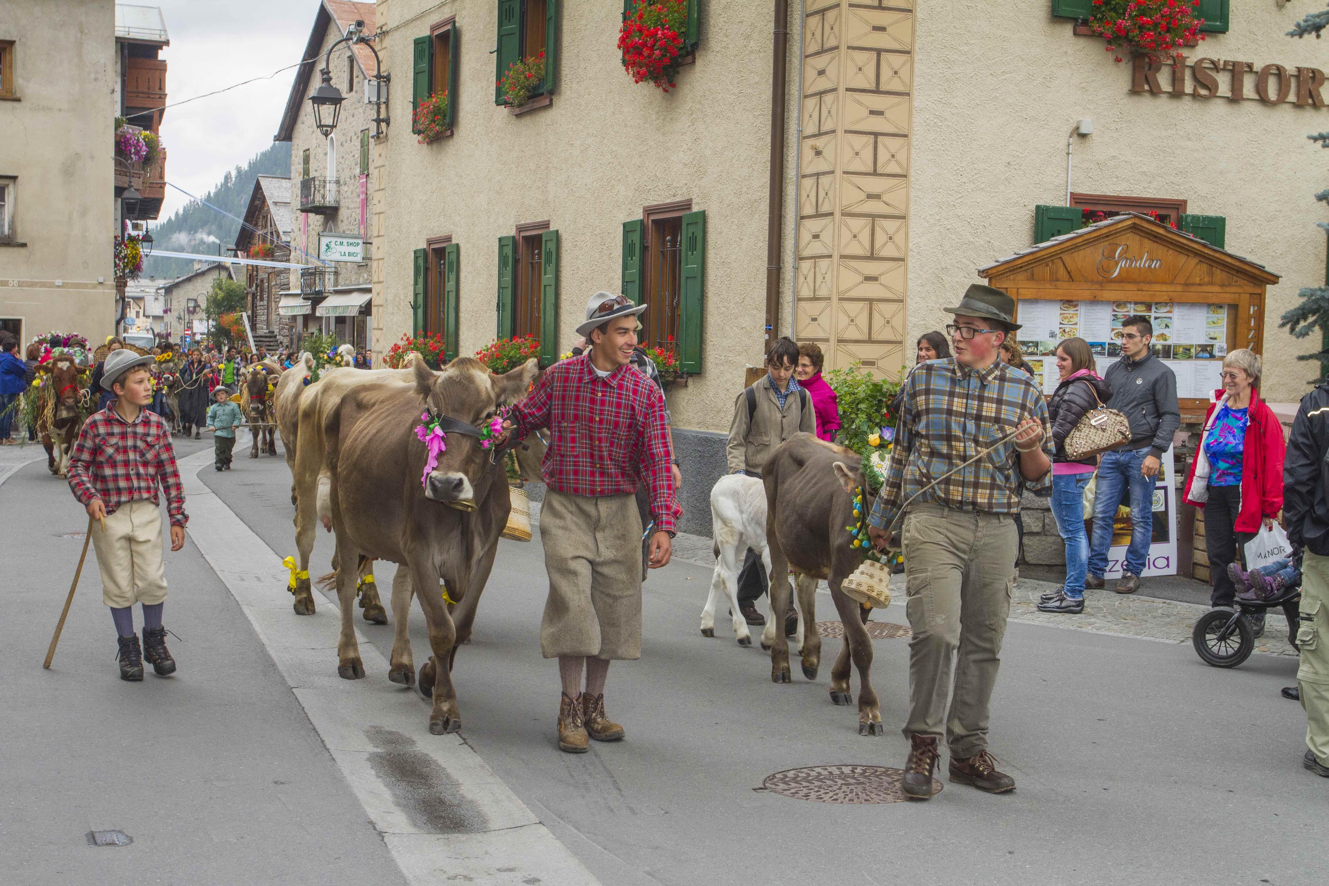 Transumanza a Livigno con Alpen Fest