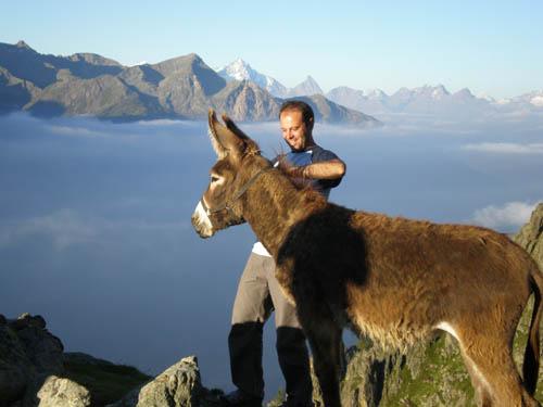 Con asini e muli, trekking in Valpelline da Aosta a Bionaz