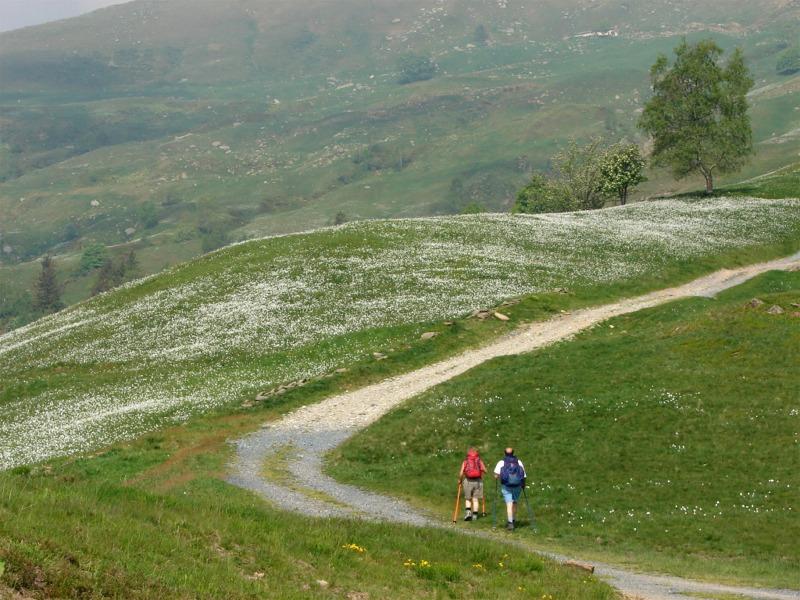Programma di Sviluppo Rurale 2007-2013, nuovo bando per lo sviluppo dell'escursionismo piemontese