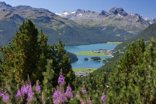 Corvatsch-St. Moritz, alla scoperta dell'acqua