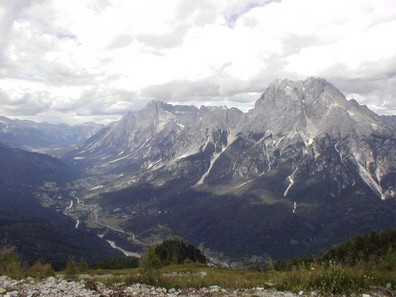 Orsi sulle montagne bellunesi