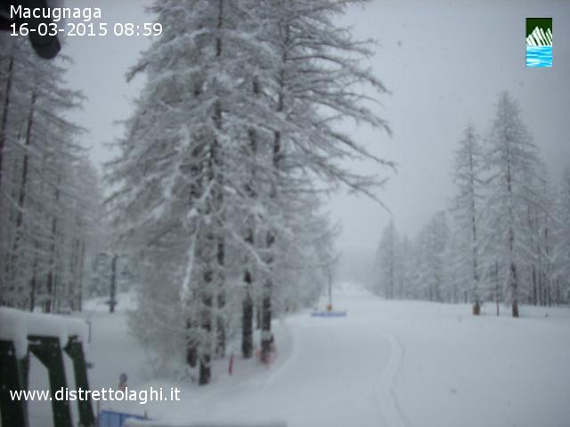 Alpi incredibili dopo le ultime nevicate